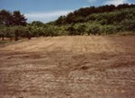 Leveled the ground for making kiln site in June. No.2