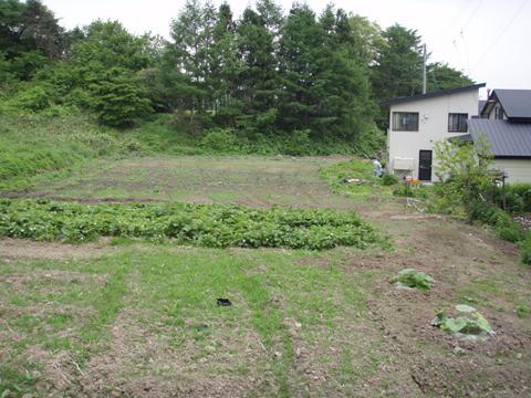 kanayama-farm