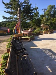 動物庭園2